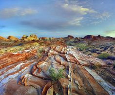 Tim Fitzharris - Rainbow Vista, Valley of Fire State Park, Nevada - art prints and posters