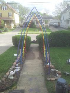 Trellis my son made out of PVC pipe