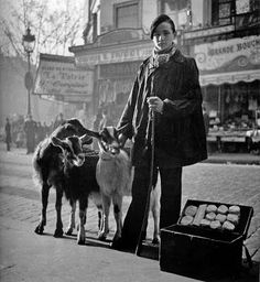 Paris, 1935: Selling goat cheese, accompanied by the representative goats. Photo by Willy Ronis (Parigi, 14 agosto 1910 – Parigi, 12 settembre 2009)
