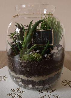 Terariu mare cu plante suculente Terrarium, Flowers, Home Decor, Terrariums, Decoration Home, Room Decor, Royal Icing Flowers, Home Interior Design, Flower