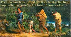 White Wolf : How the Choctaws Saved the Irish