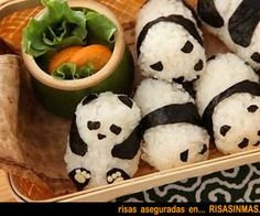 Comida Japonesa - Pandas de arroz