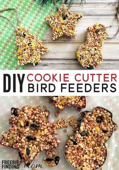 Homemade Bird Feeders: Cookie Cutter Bird Feeders Want a fun, cheap, and easy Christmas craft for kids? These Homemade Cookie Cutter Bird Feeders are sure to do the trick! You likely already have most everything you need for this fun… Continue Reading → Easy Christmas Crafts, Diy Crafts For Kids, Craft Ideas, Thanksgiving Crafts, Summer Crafts, Christmas Ideas, Easy Crafts, Christmas Tree, Preschool Christmas