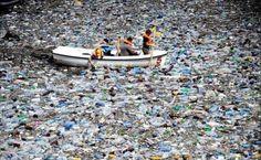Isla de plástico en el Pacífico Norte, del tamaño de Chihuahua