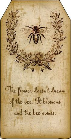 Bountiful Heirlooms: Free Printables: Bee and Beekeeping Tags Vintage Bee, Vintage Labels, Vintage Paper, Steampunk, Bee Crafts, Wood Crafts, Paper Crafts, Bee Art, Bee Theme