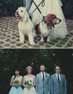 One pup kind of looks like Fen! Maybe Fen can be a part of my wedding one day!