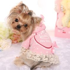 New Autumn Winter Pet Dog Hoodies Coat Small Yorkie Chihuahua Princess Pink/Yellow Lace Jacket Puppy Animal Letters Crown Outfit