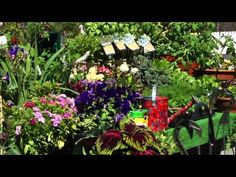 Randall's Farm & Greenhouse -