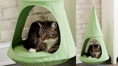 Hanging Cat Cuddle Pod ~ GoZiyan The General Blog