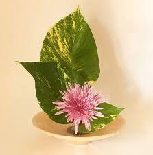 Resultado de imagem para ikebana sanguetsu