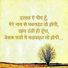 7210 Best Hindi And Punjabi Thoughts Images Hindi Qoutes Quote