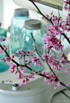 ball jars w red buds