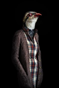 Second-Skins--Fashionably-Dressed-Animals-Photographed-by-Miguel-Vallinas #photography
