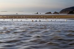 Late evening, early spring, full river near Cannon Beach, Oregon. Photo by Pat Snyder.