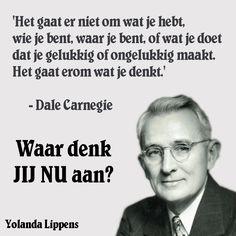 www.yolipower.nl