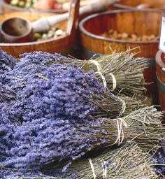 home made lavander shampoo