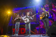 Sleepy Man Banjo Boys Bluegrass Trio Band that plays Bluegrass Music at Ted Talks 2013 Sleepy Man Banjo Boys, Bluegrass Music, Ted Talks, Music Is Life, Boy Bands, Plays, Southern, Live, Board