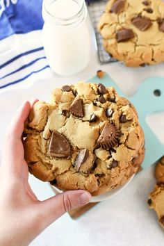 A hefty portion of a cup of peanut butter chocolate chip cookie dough is pressed into thick discs. Chopped peanut butter cups are added last. Reese Cup Cookies, Chocolate Peanut Butter Cookies, Peanut Butter Chips, Peanut Butter Cookie Recipe, Reeses Peanut Butter, Peanut Butter Recipes, Chocolate Chip Cookie Cups, Gelato, Baking Recipes