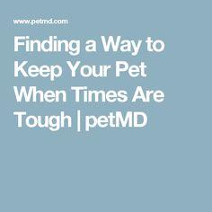 Finding a Way to Keep Your Pet When Times Are Tough | petMD