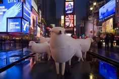 Counting Sheep - Kyu Seok Oh - Times Square, NY, 2011
