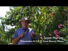 The Perfect Moment - Winemaker Scott Harvey's let's us in on harvest decisions like when to pick grapes! http://scottharveywines.com