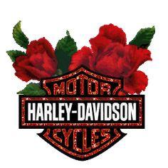 Motards - Fleurs Motor Harley-Davidson Cycles