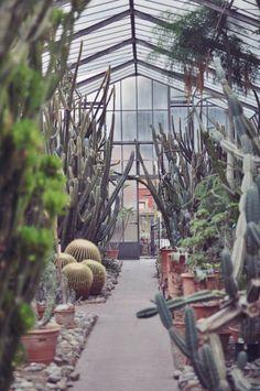 L'armadio del delitto - blog vintage e moda retro: Orto Botanico di Palermo