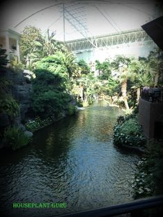 Delta River where you can take a boat ride at the Opryland Hotel