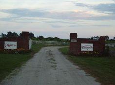Martin Winery Knots Island NC | Martin Vineyards - Knotts Island - Reviews of Martin Vineyards ...