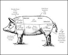 Butcher a Pig Diagram | food | Pork, Pig roast, Bbq ribs