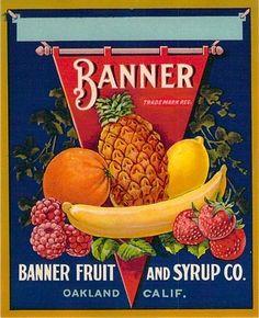 Banner Fruit