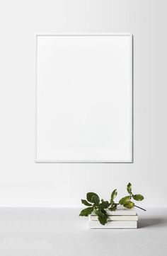Background Design Vector, Theme Background, Creative Background, Background Pictures, Photo Frame Design, Empty Frames, Green Theme, White Aesthetic, Paint Designs