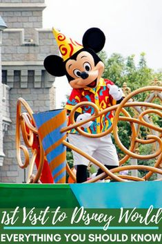 Planning your first time at Disney World can be confusing. There can be so much planning you need to do. Check out these tips for your first trip.