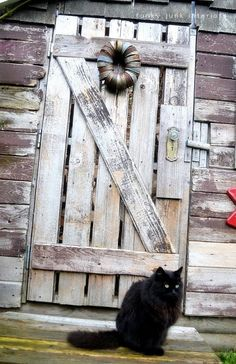 Barn wood door on a rustic garden shed / part of a junk styled shed reveal via http://www.funkyjunkinteriors.net