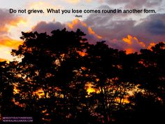 Do not grieve. What you lose comes round in another form - Rumi