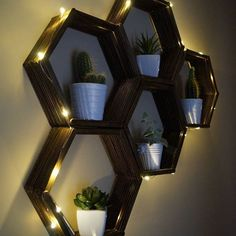 Sparkly & Cosy... #lights #shelves #diyshelves #pots #cactus #succulents #cosy #sparkle #diy #diydecor #doityourself #crafts #crafter #occasionalcrafter #handmade #EviG_Crafted #shelf #decor #decoration #walldecor #wallart #create #creation #creative #recyclablematerials #recycleable #wood #stain #cacti #plants