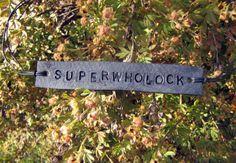 Superwholock Blue-Black BBC Sherlock Supernatural Doctor Who Fandom Inspired Tie Up Leather ID Bracelet on Etsy, $8.00 CAD