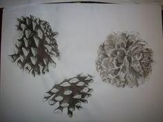 Boredom: pinecones