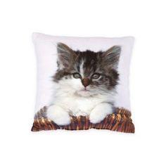 Zierkissen – Mit und ohne Füllung bei Betten Reiter Throw Pillows, Cats, Bed, Animals, Color Blue, Horseback Riding, Colors, Toss Pillows, Gatos