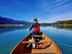 Bildergalerie - www.lets-dog.com Border Collie, Canoe, Dog Pictures, Boat, Lovers, Instagram, Camping, Dinghy, Pictures Of Dogs
