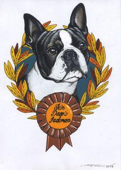 Boston , Boston Terrier , sketchbook , sketch , pet portrait