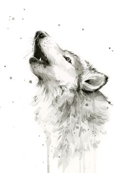 White wolf watercolor