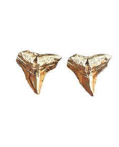 shark tooth earrings. i'd die from happiness if someone gifted me these this holiday :)