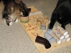 DIY cat toy / food puzzle / maze. Text in German. Katzenfummelbretter selbstgebastelt
