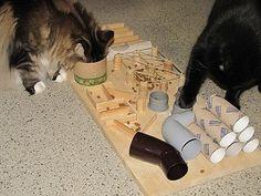 DIY cat toy / food puzzle / maze. Text in German. Katzenfummelbretter selbstgebastelt