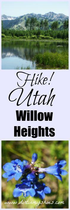 Beautiful hike to a serene lake up Big Cottonwood Canyon || Salt Lake City, UT || Dirt In My Shoes