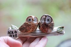 Clay Owls - Owl cake topper - clay owls - Owls Wedding cake topper - Woodland Wedding -CUSTOMIZED for You with your own colors