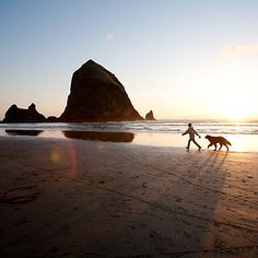 Cannon Beach, OR: An enchanting little cedar-shaked town, Cannon Beach is up to the task of catering to larger dogs with abundant pet-friendly hotels and eateries where dogs are welcome at outdoor tables.