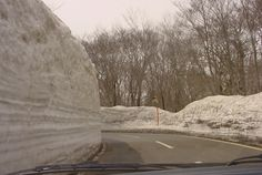 Incredible walls of snow, north of Misawa, Japan.  This place was too cold for me.