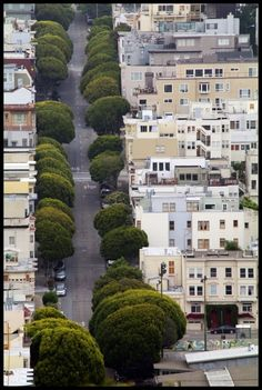You can squeeze in greens on narrow street.  It makes all the difference to the pedestrian.  Broccoli Row, San Francisco